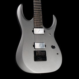 Ibanez RGD61ALET Axion Label 6-String Metallic Gray Matte (2020 Model with Fishman Fluence Pickups & Evertune Bridge)